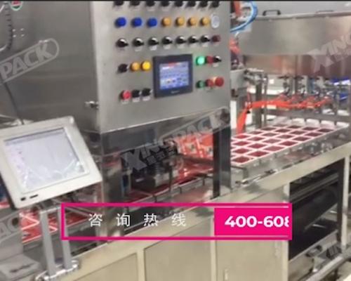 肉食生鲜盒装项目包装生产线